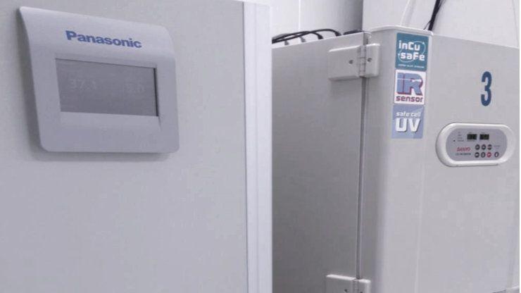 Inkubatory CO2
